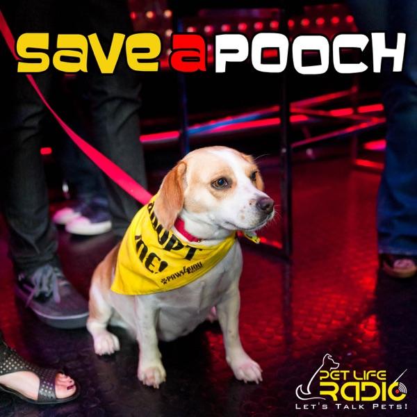 Save A Pooch - Rescue Dog Welfare on Pet Life Radio (PetLifeRadio.com)