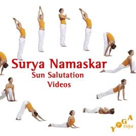 surya namaskar sun salutation  variations for beginners