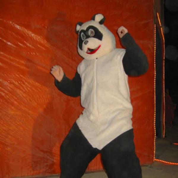 Fear The Panda