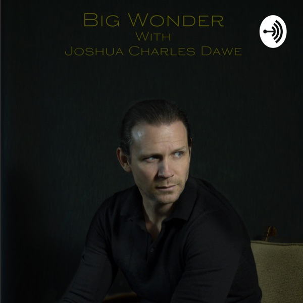 Big Wonder. Conversations with Australia's emerging Actors and Filmmakers.