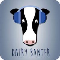 Dairy Banter podcast