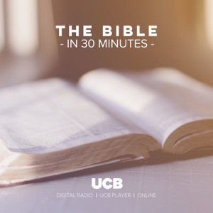 The Bible in 30 minutes (audio)