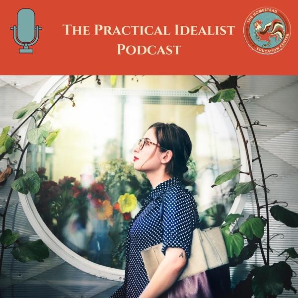 The Practical Idealist
