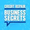 Credit Repair Business Secrets artwork