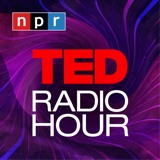 Image of TED Radio Hour podcast