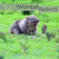 Wombat Radio Podcast with choreographers interrogating artistic process. podcast