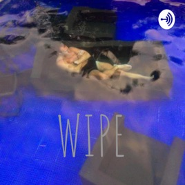 WIPE: Robotics In Practice: RIP jobs, happiness, social, meaning? on