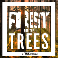 Forest For the Trees podcast