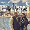 Gringo's español quest to fluency  artwork