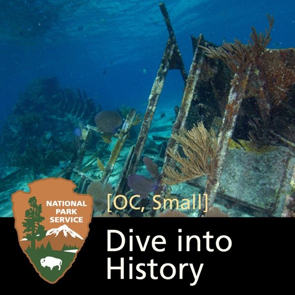 Dive into History: Shipwrecks of Biscayne National Park [OC, Small]
