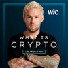 What is Crypto w/ Michael Nye artwork