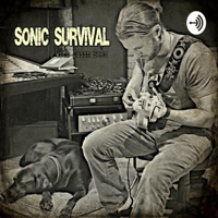 Sonic Survival: thriving in the modern music industry podcast