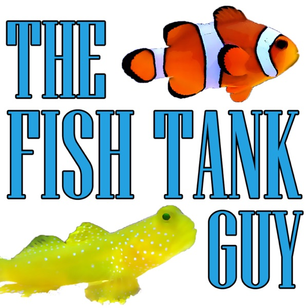 The Fish Tank Guy Podcast