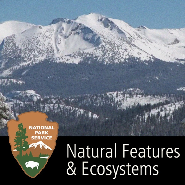 Natural Features & Ecosystems