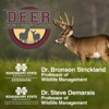Deer University artwork