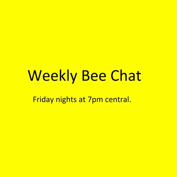 Weekly Bee Chat