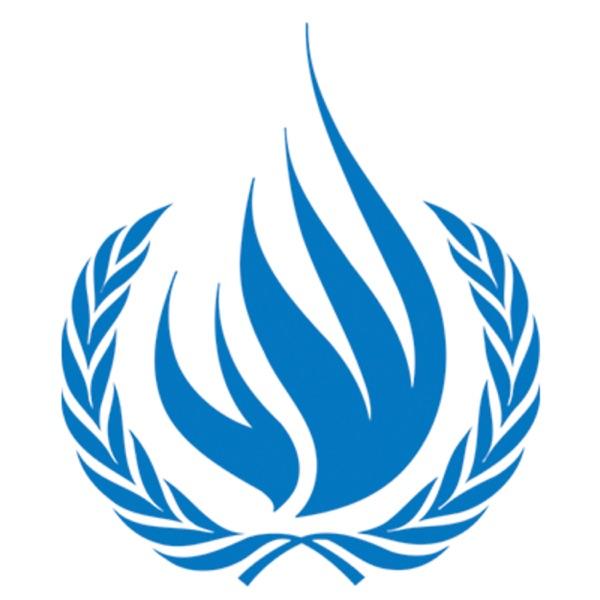 ONU-DH México