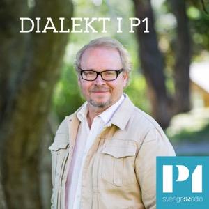 Dialekt i P1
