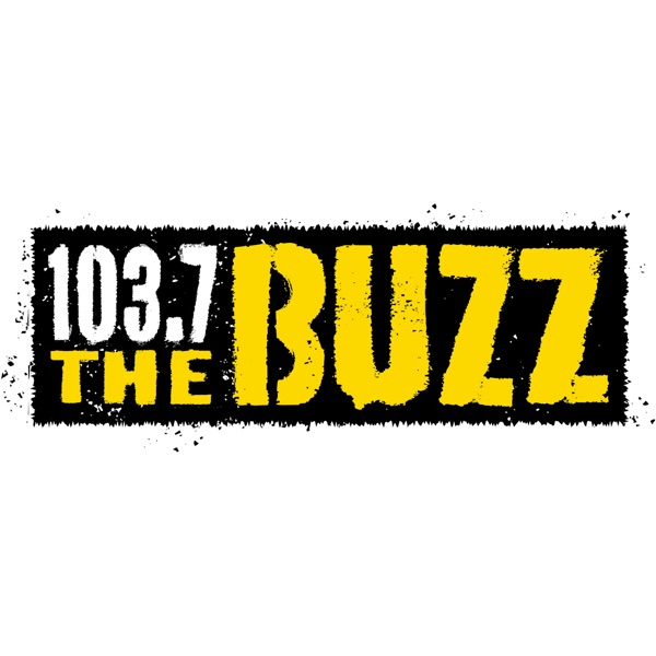 103.7 The Buzz banner backdrop