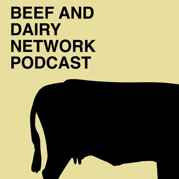 Beef And Dairy Network