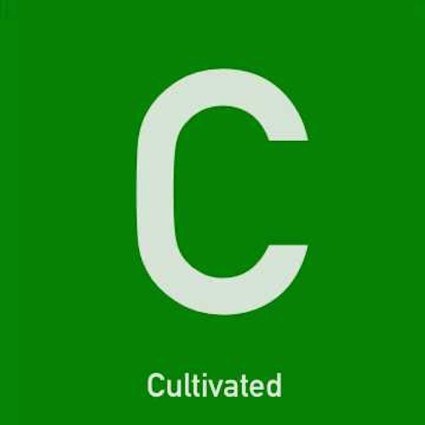 Cultivated