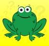 Frog Questions artwork