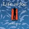 Life Of Joe artwork