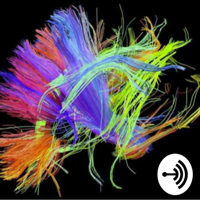 Networks: Art and Science of Creativity, a Neurophilosophical account. podcast