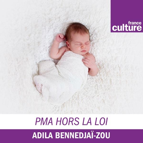 Episode 3 Mon Embryon Moldave Combien Est Ce Que Je Suis