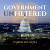 Government Unfiltered artwork