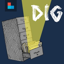 Dig Book Cover