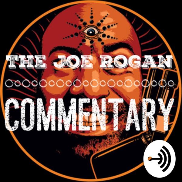 Joe rogan commentary image