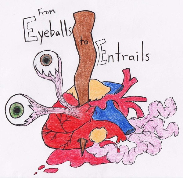 From Eyeballs to Entrails