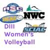 DIII Women's Volleyball artwork