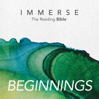 Immerse: Beginnings – 16 Week Reading Plan podcast