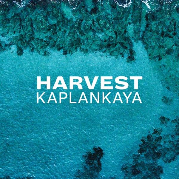 Harvest Kaplankaya