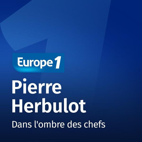 Dans l'ombre des chefs - Pierre Herbulot