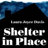 Shelter in Place artwork