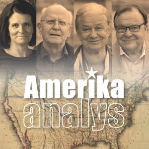 Amerikaanalys