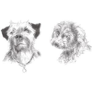 DogPod
