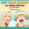 Cat Talk Radio artwork
