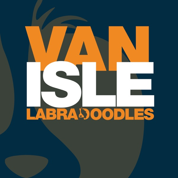 Van Isle Labradoodles