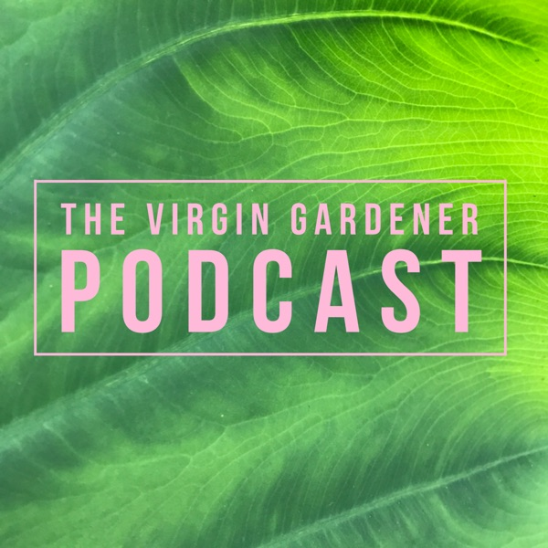 The Virgin Gardener Podcast