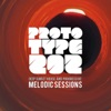Deep Sunset House and Progressive Podcast - The Melodic Sessions by Prototype 202 artwork