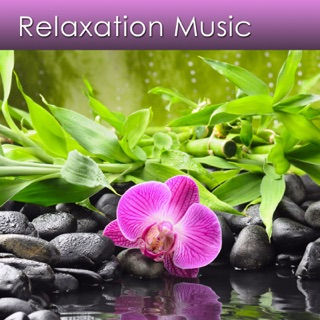 Reduce Stress Now on Apple Podcasts