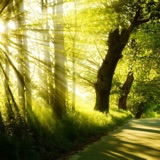 Image of Nature calm music, sounds. Relaxation, background music podcast