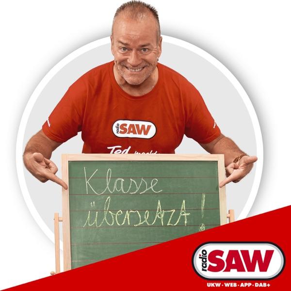 Was heisst das auf deutsch? Superhits und ihre Texte.