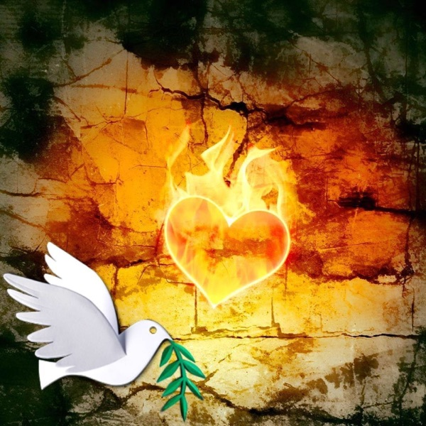 Transformando al corazón