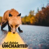 Josh Belcher Uncharted  artwork