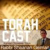 TorahCast artwork